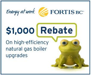pghs-Natural-gas-boiler-and-combination-heating-and-hot-water-system